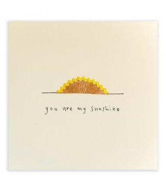 Ruth Jackson Pencil Shavings Cards by Ruth Jackson | You Are My Sunshine