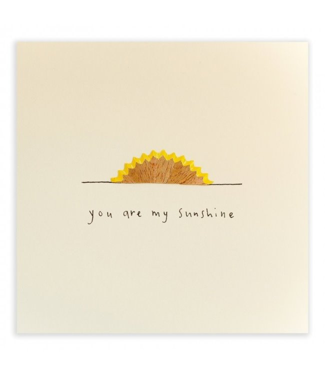 Pencil Shavings Cards by Ruth Jackson | You Are My Sunshine
