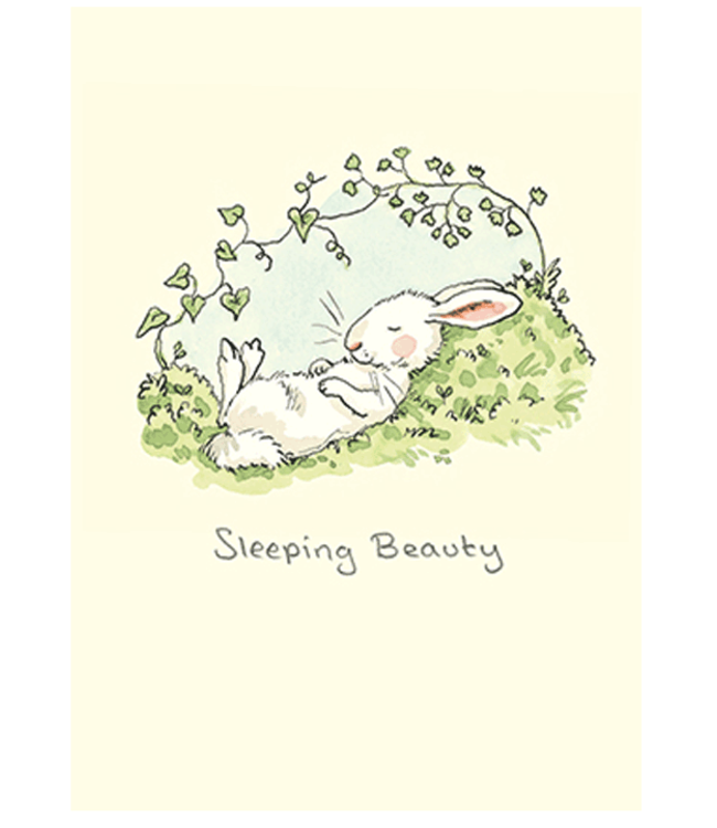 Two Bad Mice | Anita Jeram | Sleeping Beauty