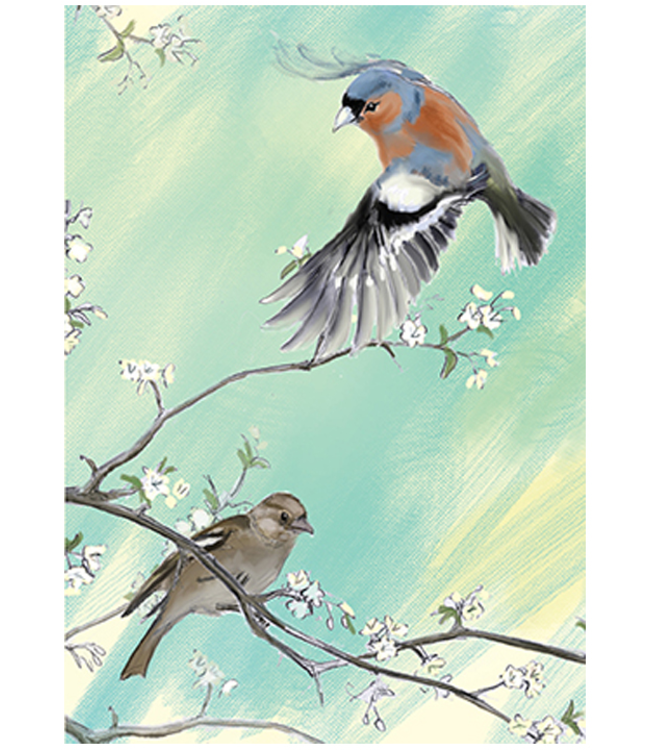 Two Bad Mice | Julian Williams | The Common Chaffinch