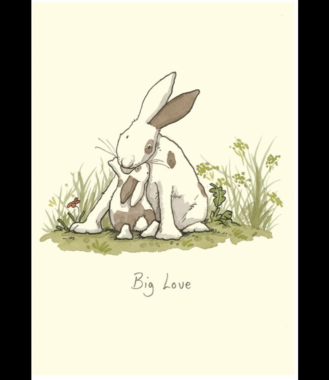 Two Bad Mice   Anita Jeram   Big Love