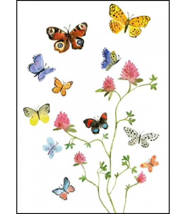 Bekking & Blitz | Alice Appleton | Flowers and Butterflies