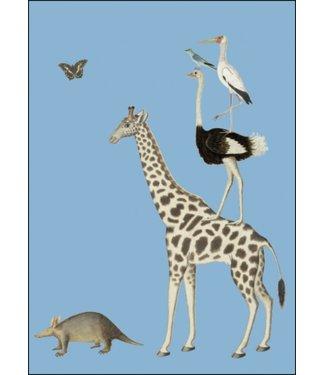 Bekking & Blitz Bekking & Blitz | Robert Jacob Gordon | Giraffe