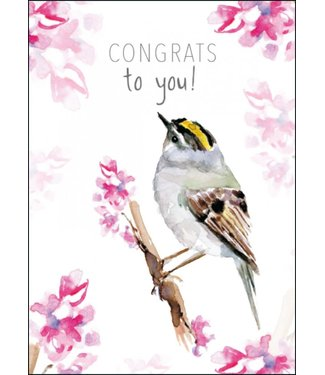 Bekking & Blitz Bekking & Blitz | Michelle Dujardin | Congrats to you! (goldcrest/goudhaantje)