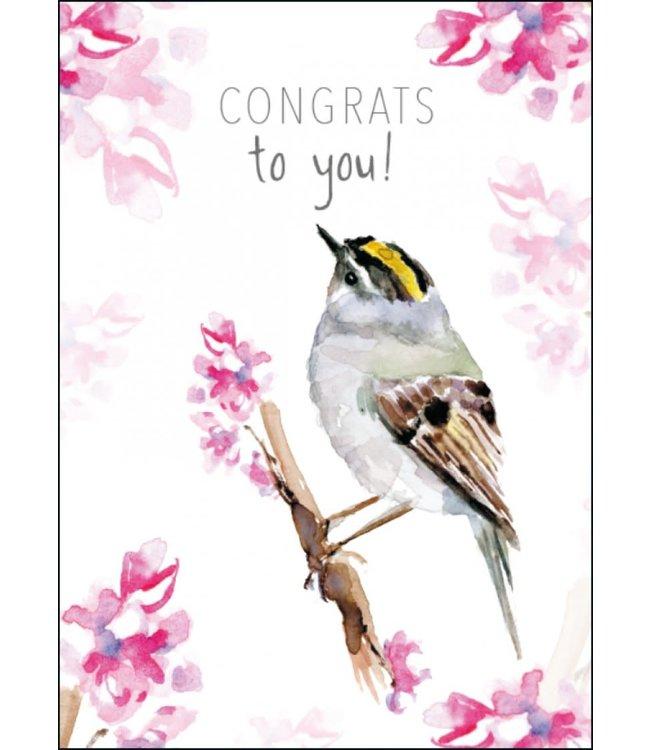 Bekking & Blitz | Michelle Dujardin | Congrats to you! (goldcrest/goudhaantje)