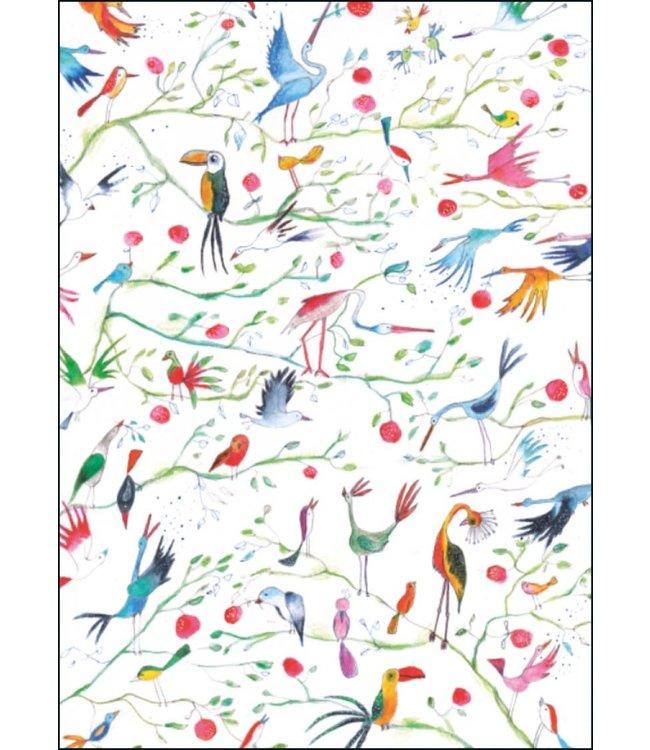Bekking & Blitz | Miriam Bouwens | Birds of Paradise