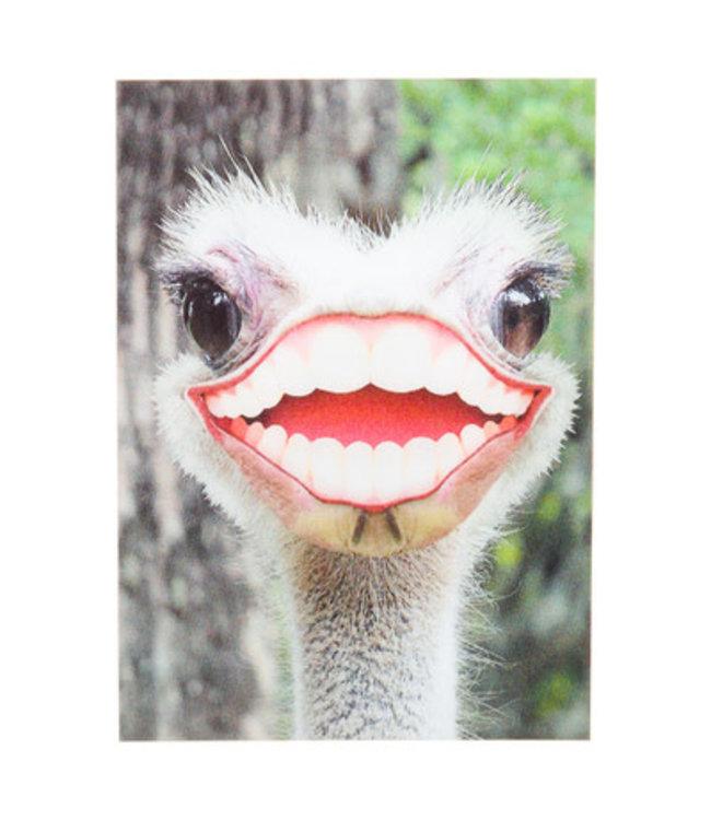 Lenticulaire Kaart Bewegend   Lachende Struisvogel