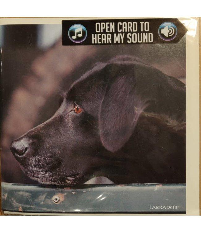 Really Wild Cards | Wenskaart met Geluid  | Country Sports | Labrador