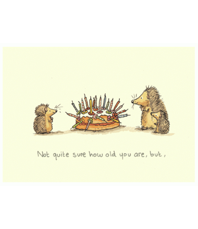 Two Bad Mice | Anita Jeram | Not Sure How Old You Are, But…