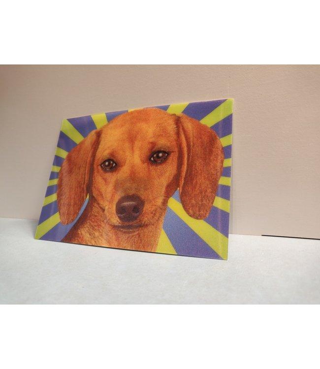 Lenticulaire Kaart Bewegend   Lieve Hond met Twinkelend Oog