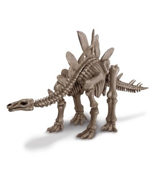 4M 4M KidzLabs | Graaf je dinosaurus op | Stegosaurus | 8+