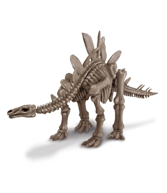 4M KidzLabs | Graaf je dinosaurus op | Stegosaurus | 8+