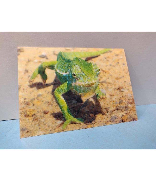 Lenticulaire Kaart Bewegend | Lachende Kameleon