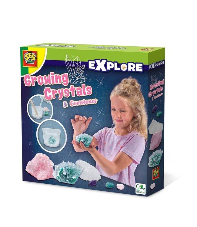 Ses   Explore   Groeiende Kristallen en Edelstenen   8+