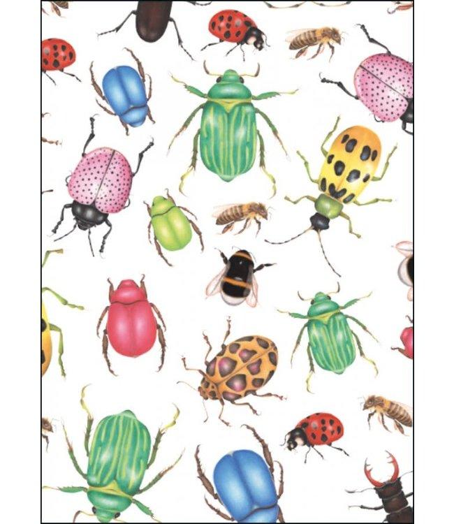 Bekking & Blitz | Sorcia | Insecten