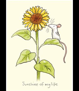 Two Bad Mice | Anita Jeram | Sunshine of my life