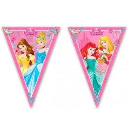 Disney Princess vlaggenlijn 2.3 meter