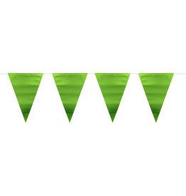Vlaggenlijn mat metallic groen 6 meter