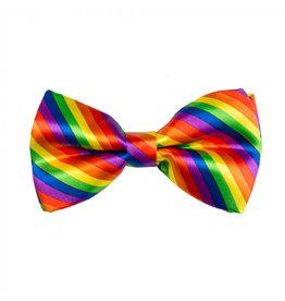Boland vlinderstrik regenboog kleuren 1 stuk