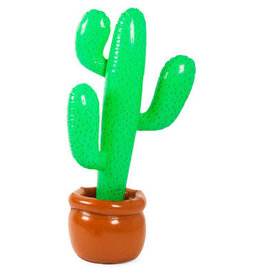 Cactus opblaasbaar in pot