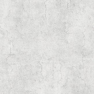 Dutch Wallcoverings Horizons/Couleurs uni/beton grijs - L448-09