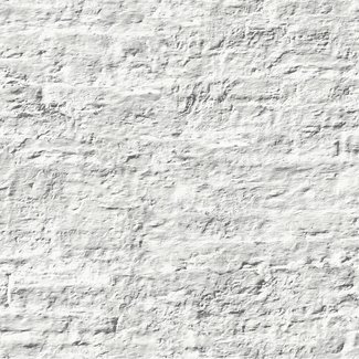 Dutch Wallcoverings Palma shabby muur wit - 18129