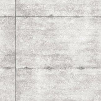 Dutch Wallcoverings Trilogy Smooth Concrete grijs - 22314