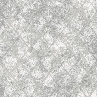 Dutch Wallcoverings Reclaimed Mercury Glass zilver - 22326