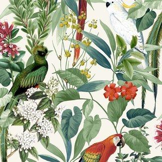 Dutch Wallcoverings Escapade tropische vogels groen - 576204
