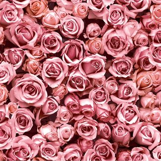 Dutch Wallcoverings Escapade rozen roze - L770-03