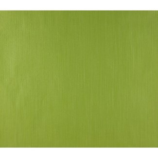 Dutch Wallcoverings Papier uni groen - 1190-3