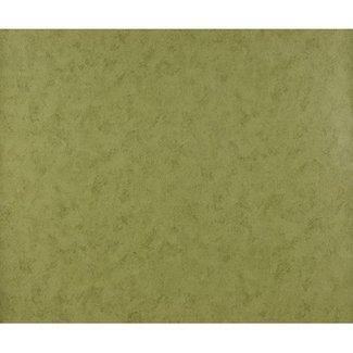 Dutch Wallcoverings Behang uni olijfgroen - 528-3