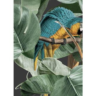 KEK Botanical Birds black 2d