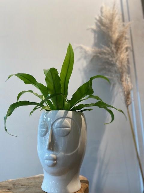 Pot Mask wit 19x19x26 cm