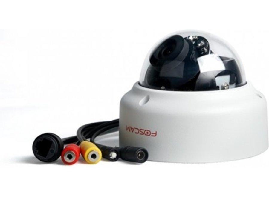 Foscam D2EP beveiligingscamera buiten