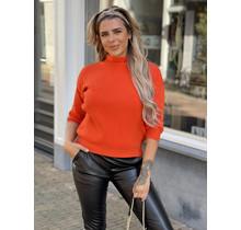 Ambika High Neck Sweater Orange
