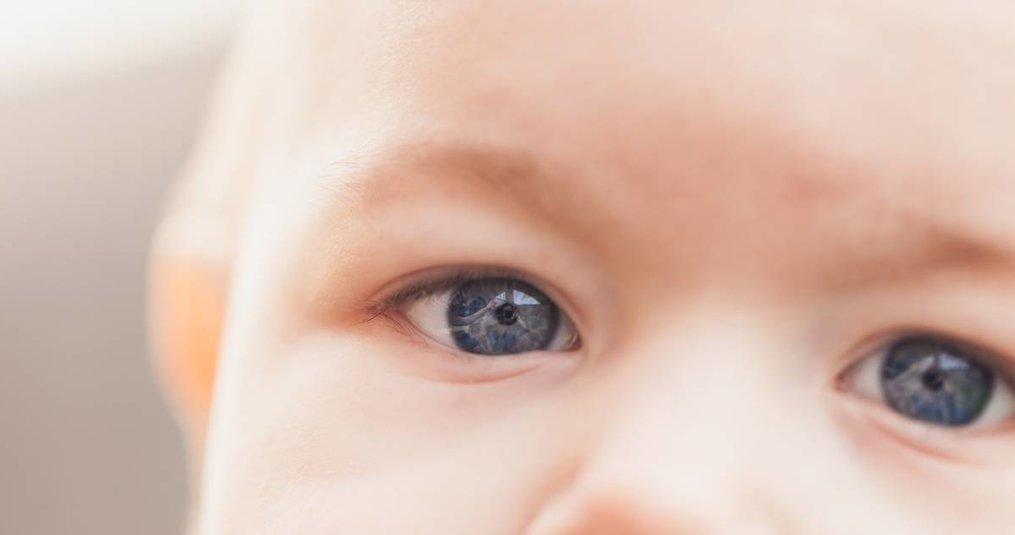 Bambo: beste bescherming voor babybilletjes