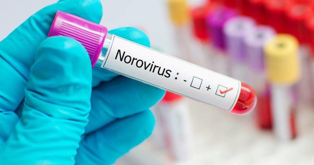 Norovirus? Wat nu? Hoe te handelen bij norovirus en buikgriep.