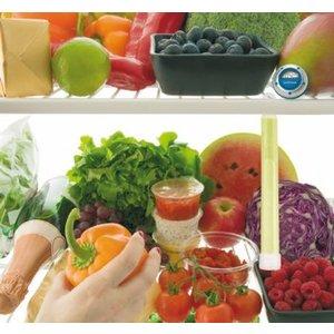 Snap 'n Care Hygienesticks voor koelkast ( 2 stuks)