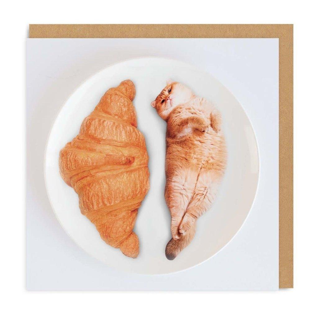 Cat Croissant