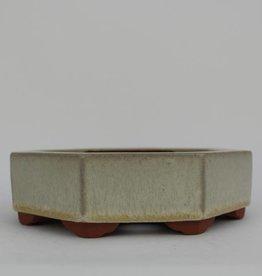 Tokoname, Bonsai Pot, no. T0160038
