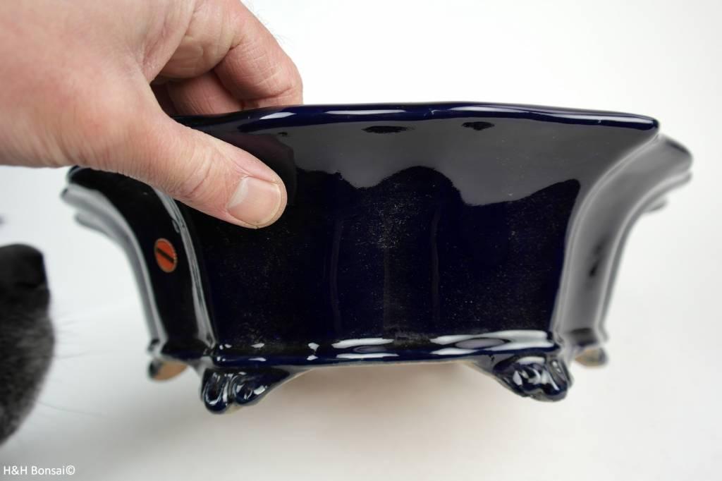 Tokoname, Bonsai Pot, no. T0160168