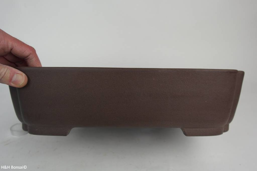 Tokoname, Bonsai Pot, no. T0160173