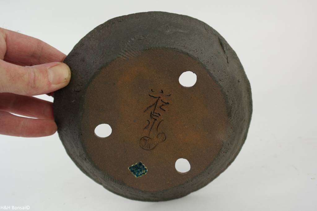 Tokoname, Bonsai Pot, no. T0160204