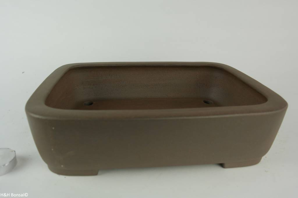 Tokoname, Bonsai Pot, no. T0160236