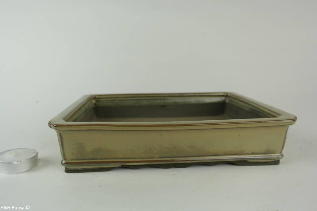 Tokoname, Bonsai Pot, no. T0160248