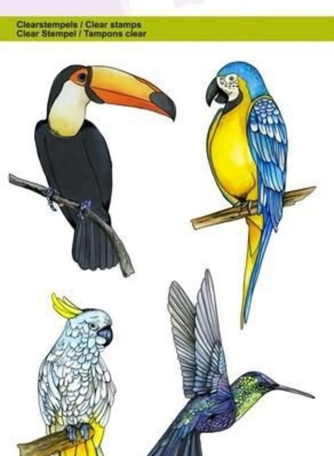 Craftemotions | Paradijs vogels