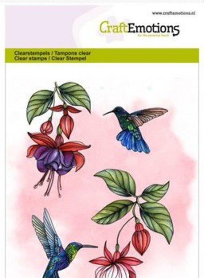 Craftemotions   Kolibrie