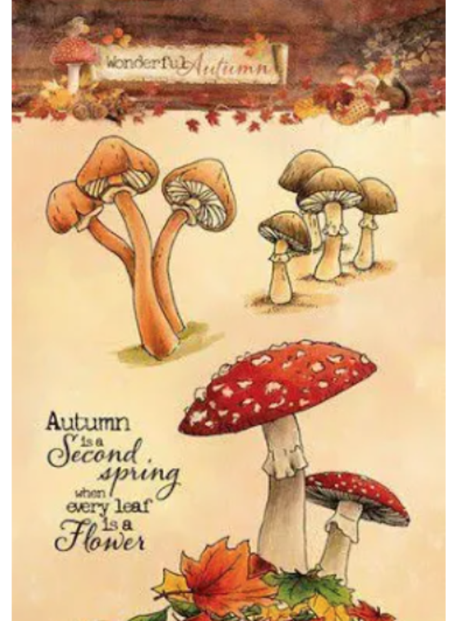 Studio Light | wonderful autumn paddenstoel - A480