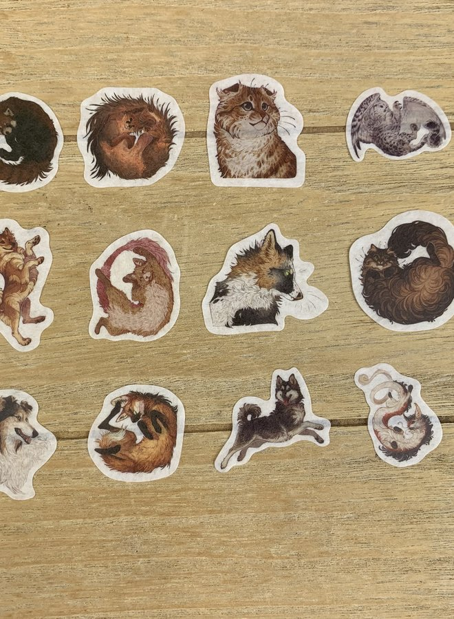 Stickers I 200 Katten - set